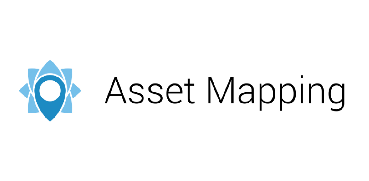 asset mapping logo
