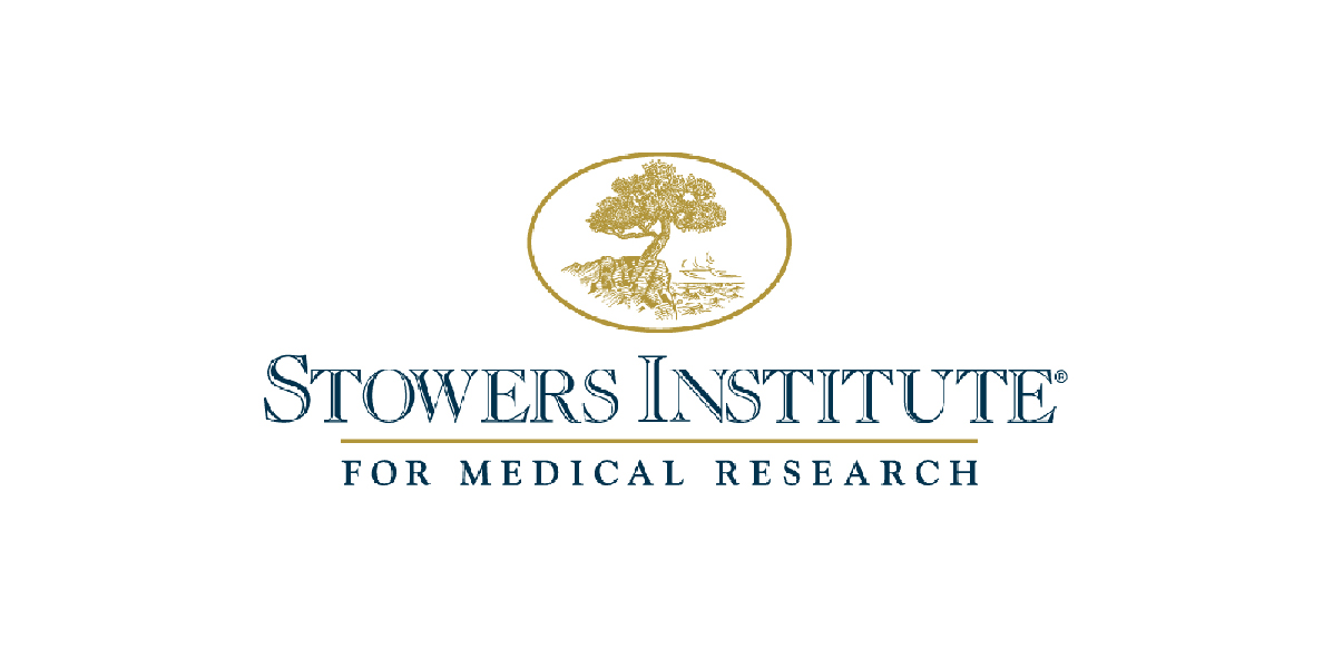 stowers institute
